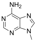 9-Methyladenine