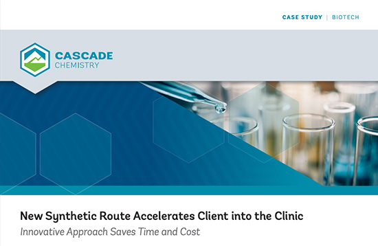 Case Study Synthetic